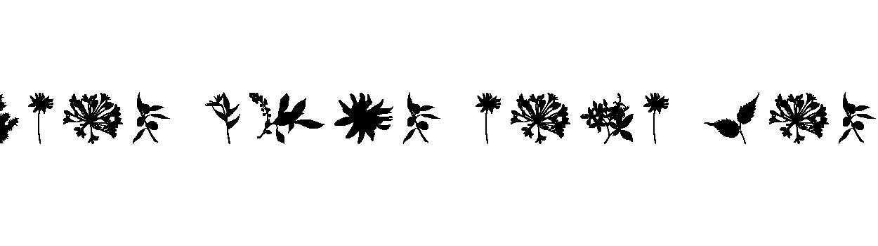 5152-planto