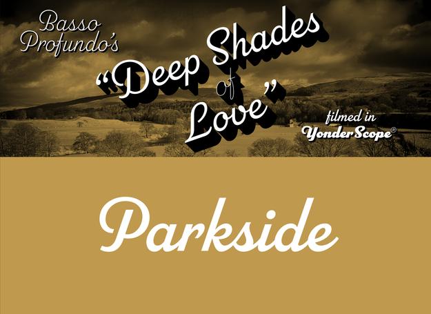 Parkside_banner_sample_1540_billboard